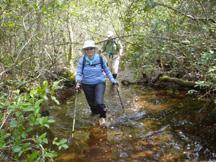 Bradwell Bay Swamp Tromp (Kent Wimmer)